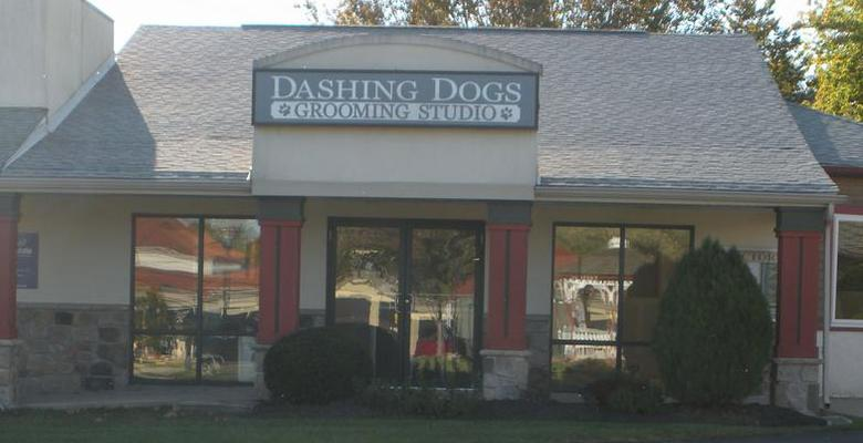Dashing Dogs Grooming Studio